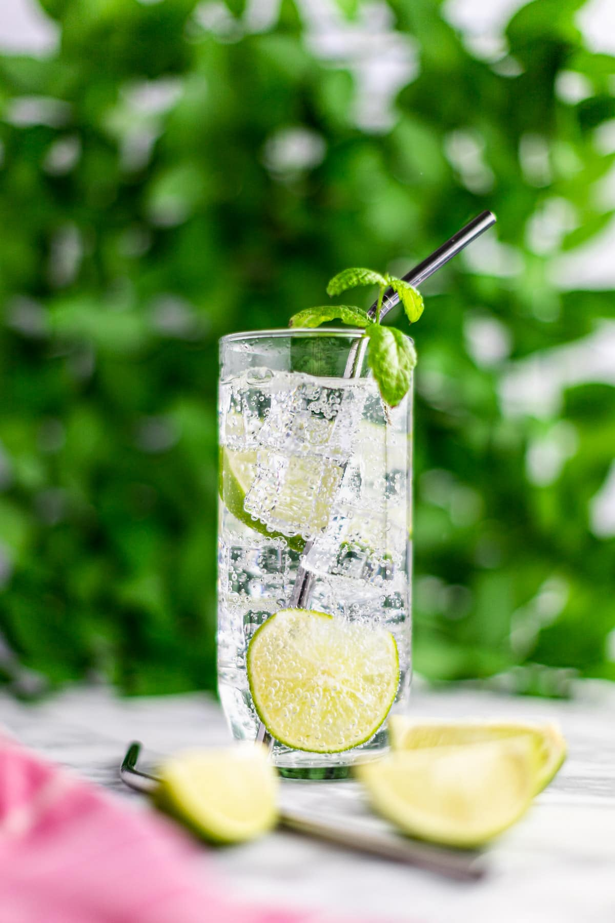 A mojito, garnished with lime and mint, and a metal straw in the glass, in front of a wall of green leaves.