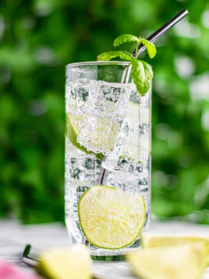 Up close photo of a gin mojito, with lime slices floating in the glass, and garnished with mint, with a backdrop of green leaves.