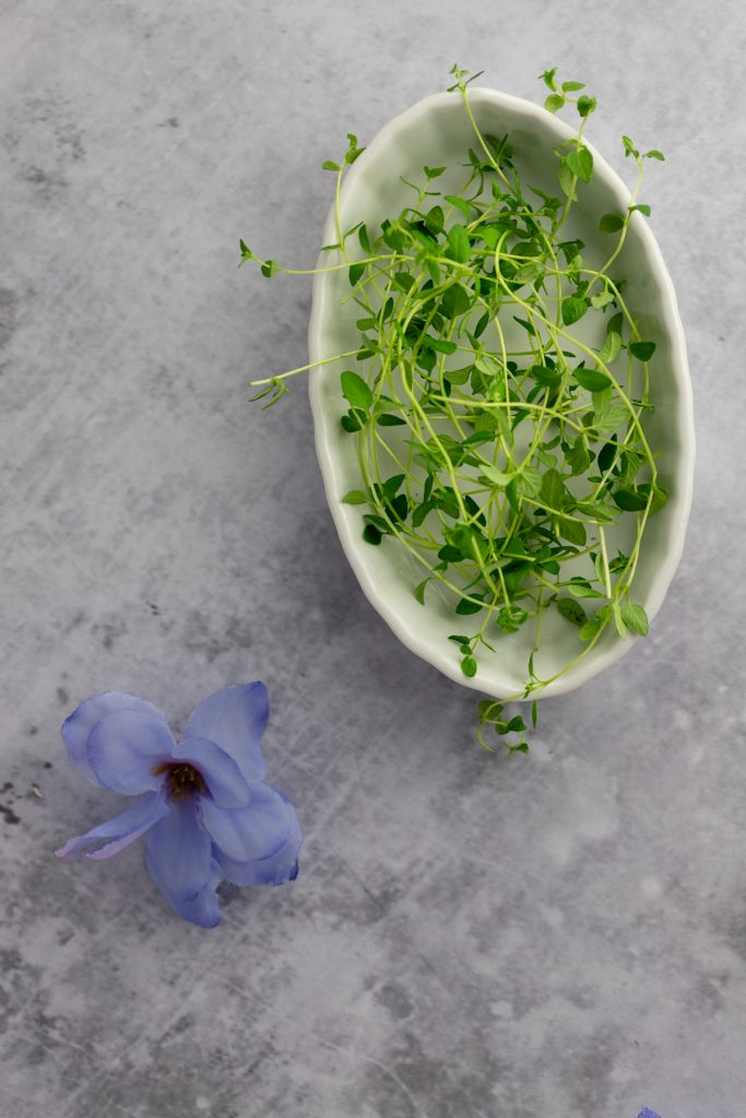 Overhead photo of a flat white dish holding fresh thyme sprigs, next to a purple-blue flower on a grey background.